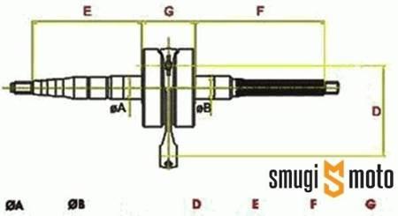 Wał korbowy, Minarelli AM6 (duży czop alternatora 20mm)